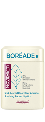BOREADE R STICK REPARADOR 11 ML